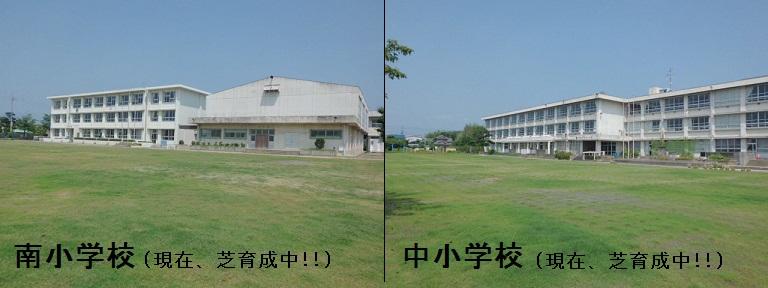 学校のグラウンドの芝生化事業/...